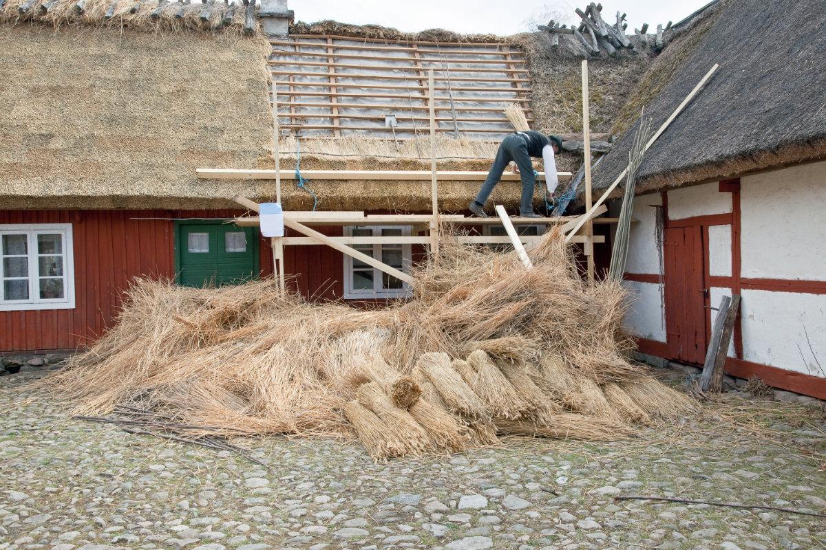 rieten daken vervangen